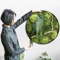 Lonjew Wall Art - Green Moss Wall Art, Fern Greenery Home Decor, Living Plant Round Frame, Botanical Framed Art, Nature Room Decor, Preserved Moss (15.7 inches)