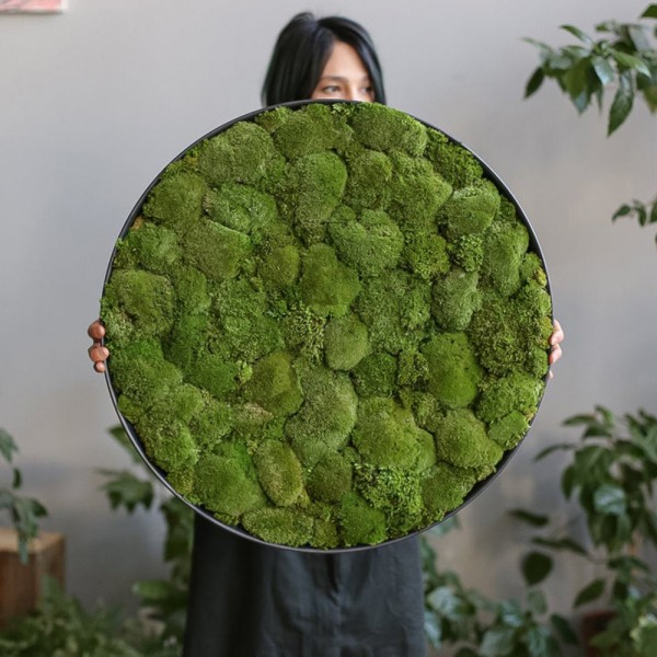 Lonjew Wall Art - Moss Round Wall Art, Greenery Home Decor, Natural Living Plant Frame, Preserved Moss Framed, Botanical Wall Hanging (23.6 inches)