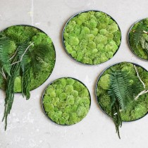 Lonjew Wall Art - Green Moss Wall Art, Fern Greenery Home Decor, Living Plant Round Frame, Botanical Framed Art, Nature Room Decor, Preserved Moss (23.7 inches)