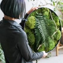 Lonjew Wall Art - Green Moss Wall Art, Fern Greenery Home Decor, Living Plant Round Frame, Botanical Framed Art, Nature Room Decor, Preserved Moss (19.7 inches)